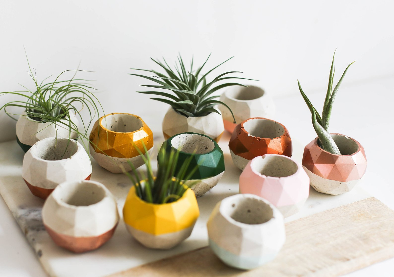 many small geo succulent planters