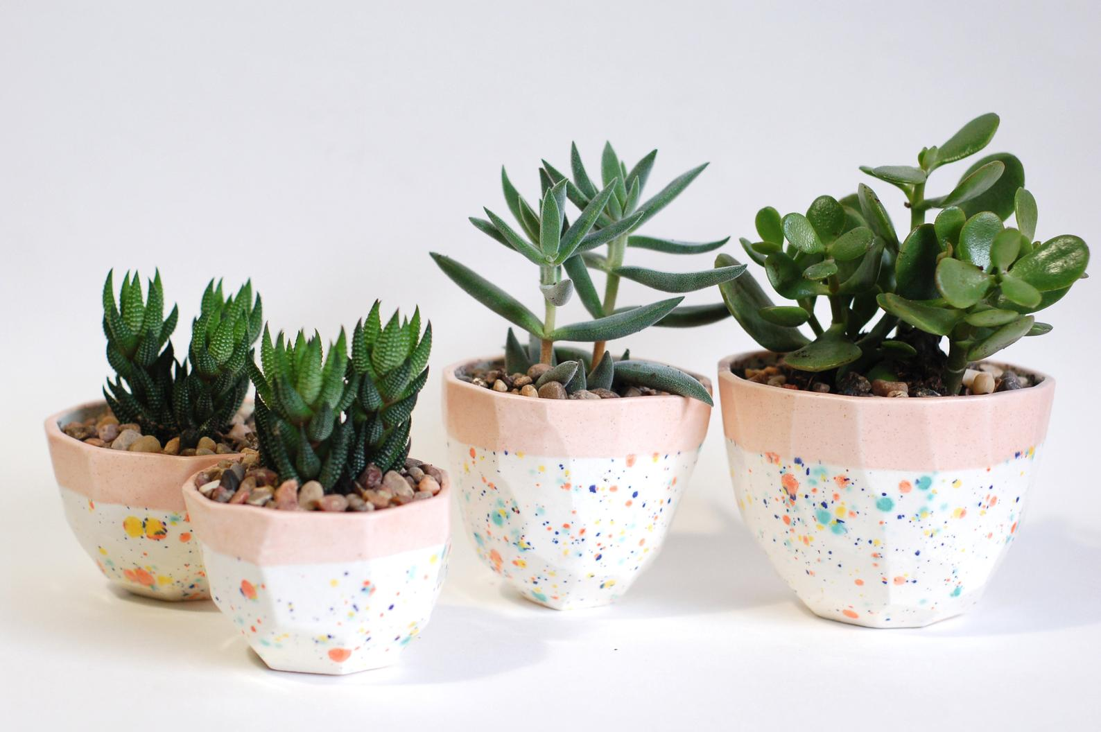 faceted peach and sprinkles planters of 4 sizes with succulents in them